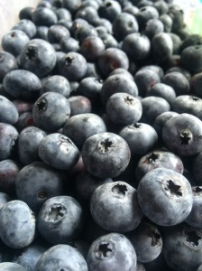 Blueberries! www.foreverfitmom.net