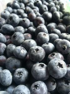 Blueberries! www.foreverfitmom.net